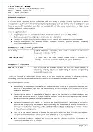 Professional Resume For Chartered Accountants Kantosanpo Com