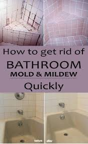find out how to clean your bathroom from mold and mildew with natural products and will less effort