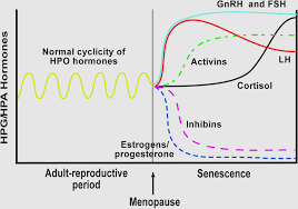 Menopause Hormone Levels Chart Fsh Levels Chart Gallery Of Chart 2019