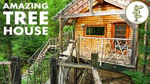 Hanging Tree House Tiny Tree House With Hanging Bridge Makes Off Grid Living Fun