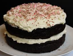 Double Chocolate Peppermint Cake – Icing The Steak