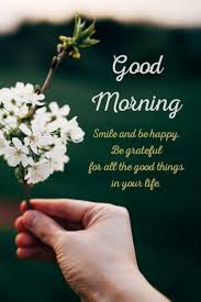 35 Good Morning Quotes With Beautiful Images Tiny Positive