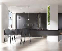 black and white kitchen design pictures. other related interior design ideas you might like. black and white kitchen pictures