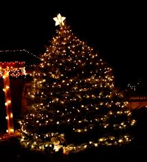 easy outside christmas lighting ideas. Easy Christmas Lights Outdoor Best Of Featues An Tree Decorated With Outside Lighting Ideas I