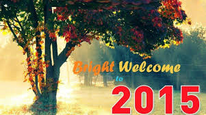 happy new year 2015 wallpaper free download. Contemporary Happy HD Wallpapers Happy New Year 2015 Free Download  Stay2learn For Wallpaper