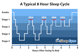 Normal Sleep Pattern Adorable Get To Sleep Faster And Stay Asleep All Night Sleep Sync