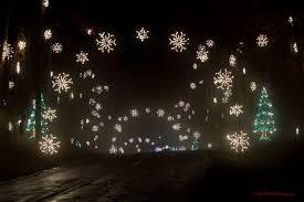 Greensboro Christmas Tree Lighting Must See Holiday Light Shows Across North Carolina