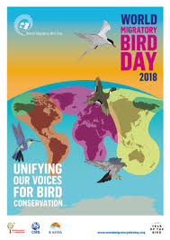 Wmbd Themes Since 2006 World Migratory Bird Day