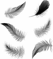 These are digital cut or print files. Feather Pen Free Vector Download 1 379 Free Vector For Commercial Use Format Ai Eps Cdr Svg Vector Illustration Graphic Art Design