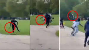 Appear at hyde park and use his superpowers to get them to stop? the stabbing, which left a young man hospitalised, has also sparked further discussion on the apparent gang culture which. 3bmg4vm0qflilm