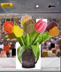 digital flower collages capture anti trump protest chaos creators after flowers for algernon 8 hashtag live 2017 courtesy of gregory eddi jones