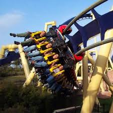 busch gardens tampa vacation packages. share this profile: busch gardens tampa vacation packages