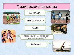 Презентация на тему Физические качества класс Учитель  3 Физические качества Быстрота Выносливость Сила Координационные способности равновесие ловкость Гибкость