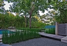 Small Picture Garden design dallas