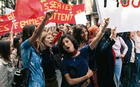 bunch ideas of feminists should not be content mere equality  bunch ideas of feminists should not be content mere equality magnificent gay rights movement 1960s essay