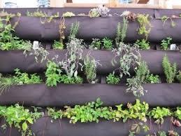 tips on making vertical herb garden