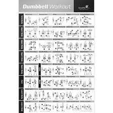 Dumbbell Workout Chart Dumbbell Exercise Poster Laminated Workout Strength Training Chart 20x30 Inch