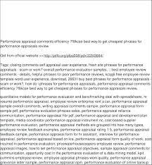 Performance Evaluation Comments Examples Heatsticks Co