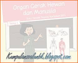 Jun 11, 2021 · kunci jawaban tema 9 kelas 5 sd halaman 104, 105, 106, 107, 108, 109, dan 110 dalam buku tematik subtema 2 pembelajaran 5. Lengkap Kunci Jawaban Tematik Kelas 5 Tema 1 Organ Gerak Hewan Dan Manusia Kumpulan Soal Ujian