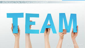 working as a team working in a team environment definition skills video lesson