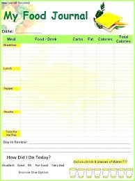 Food Journal Excel Template Elimination Diet Nutrition