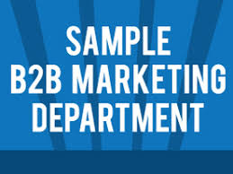 How To Organize A B2b Marketing Department Infographic