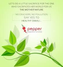 Pepper Designs Pvt Ltd