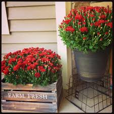 Outdoor Decorating For Fall 15 Cheap And Cute Fall Front Porch Decorating Ideas Front