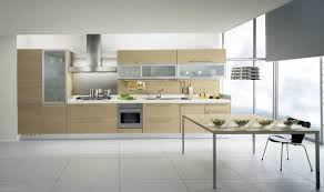 elegant kitchen style with plywood flat maple cabinet kitchen design frosted glass cabinet door ideas