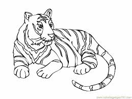Small Picture Tiger new 12 Coloring Page Free Tiger Coloring Pages