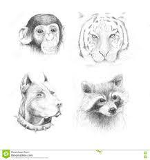 Metta Gli Animali Del Disegno A Matita Illustrazione Di Stock