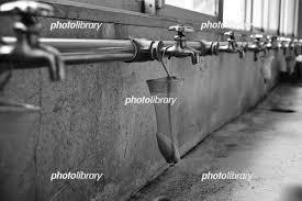 学校の手洗い場 写真素材 5904216 フォトライブラリー Photolibrary