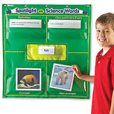 Frayer Boy Details About Spotlight On Science Words Pocket Chart By Learning Resource