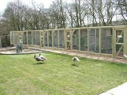 Pheasant Cage Designs New Pheasant Aviaries At Blackbrook Apr 09 Blackbrook Zoo