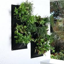 vertical gardening planters herb wall pocket vertical garden vertical garden planters south africa