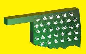 Oklahoma Kidding May Weekly Vote no Now - Pot Boulder Recreational On