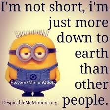 Super Funny Quotes Fascinating 48 Best Funny Minion Quotes On The Internet