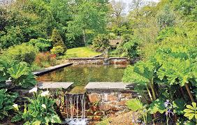 Small Picture Designer country garden in Cornwall Garden Design Journal