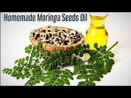moringa seeds oil for extremely hair