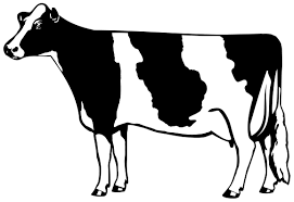 dairy cow silhouette. Unique Silhouette In Dairy Cow Silhouette