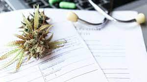 At louisiana marijuana card, all of our doctors are not only licensed under the state of louisiana but also have taken additional continuing medical education cannabis courses to ensure that they have critical and recent information related to the therapeutic benefits of medical marijuana. Louisiana Marijuana Card Country Roads Magazine