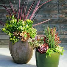 Small Picture Garden Design Garden Design with Potted Plant Ideas Full Sun
