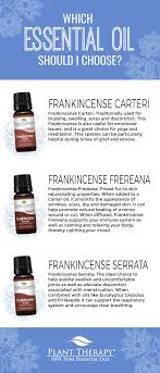 which frankincense essential oil should i choose plant therapy