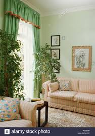 Peach Living Room Tall Green Houseplants And Pale Green Curtains Edged With Peach In