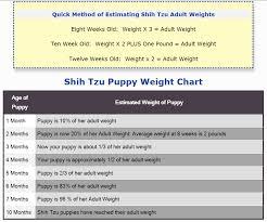 Shih Tzu Puppy Weight Chart Shih Tzu Puppy Weight Charts