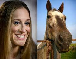 horse face person. Contemporary Person You Be The Judgeu2026 To Horse Face Person
