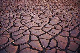 soil pollution causes and effects that are seriously eye opening loss of soil and natural nutrients present in it plants also would not thrive in such soil which would further result in soil erosion