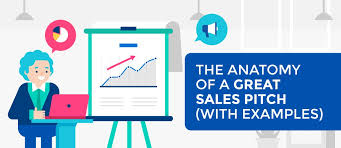 Sales Presentaion The Anatomy Of A Great Sales Pitch With Examples
