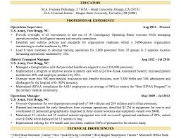 noticeable resume tips it tags resume tips business development