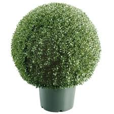 mini boxwood ball shaped artificial topiary tree in 9 in round green